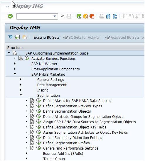 Assign SAP HANA data sources to Segmentation objects