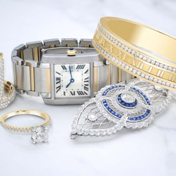 Jewelry and Watches Management Software